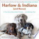 Harlow   Indiana  and Reese