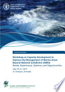 Workshop On Capacity Development To Improve The Management Of Marine Areas Beyond National Jurisdiction Abnj Needs Experiences Options And Opportunities