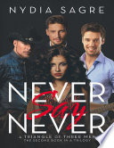 Never Say Never  A Triangle of Three Men the Second Book In a Trilogy