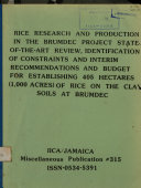 Rice Research and Production in the Brundec Project.