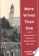 More Wives Than One Book