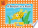 A Boxfish in a Rush