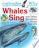 I Wonder Why Whales Sing