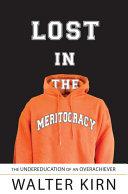 Pdf Lost in the Meritocracy