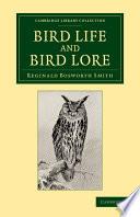 Bird Life And Bird Lore