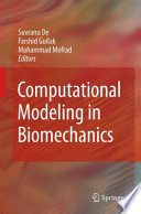 Computational Modeling In Biomechanics Book PDF