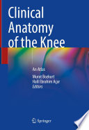 Clinical Anatomy of the Knee