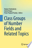 Class Groups Of Number Fields And Related Topics