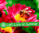 Let's Look at Summer by Sarah L. Schuette PDF
