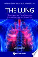 Lung  The  Developmental Morphogenesis  Mechanobiology  And Stem Cells