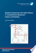 Metabolic Engineering of the Valine Pathway in Corynebacterium Glutamicum - Analysis and Modelling