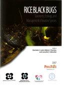 Rice Black Bugs