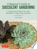 A Beginner s Guide to Succulent Gardening