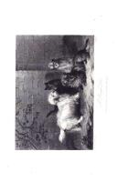 Σελίδα 8