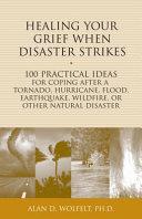 Healing Your Grief When Disaster Strikes [Pdf/ePub] eBook