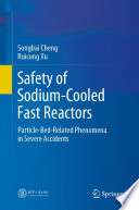 Safety of Sodium Cooled Fast Reactors Book