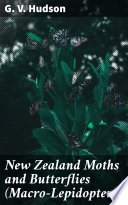 New Zealand Moths and Butterflies  Macro Lepidoptera