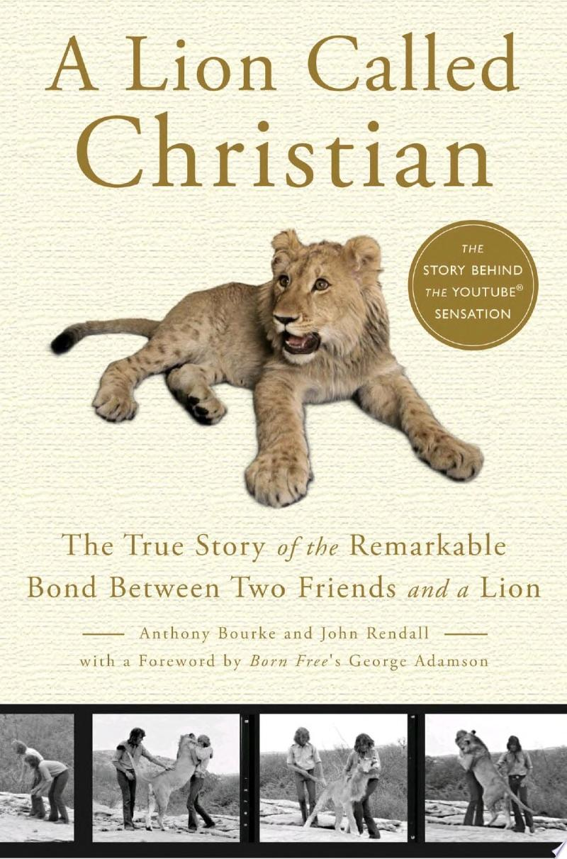 A Lion Called Christian image