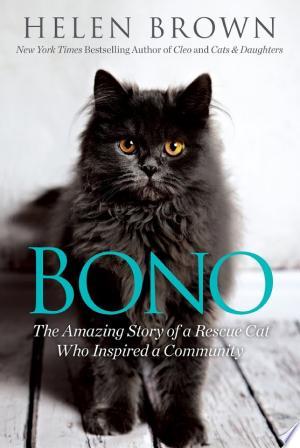 Download Bono Free Books - Home