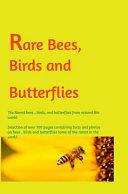 Rare Bees  Birds and Butterflies