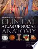 Abrahams' and McMinn's Clinical Atlas of Human Anatomy E-Book