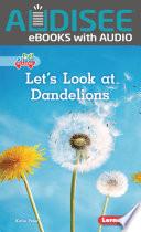 Let s Look at Dandelions