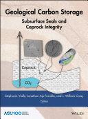 Geological Carbon Storage [Pdf/ePub] eBook