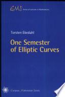 One Semester Of Elliptic Curves