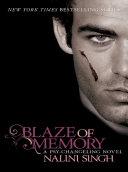 Blaze of Memory ebook