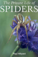 The Private Life of Spiders