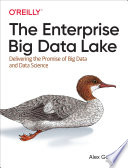 The Enterprise Big Data Lake Book
