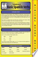 Spanish Verbs  Blokehead Easy Study Guide