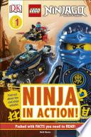 Lego Ninjago Ninja In Action