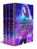 The Accidental Witch Trilogy  books 1 3