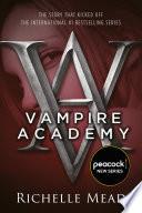 Vampire Academy image