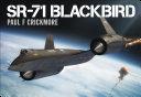 SR-71 Blackbird Pdf/ePub eBook