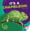 It s a Chameleon