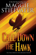 link to Call down the hawk in the TCC library catalog