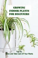Growing Indoor Plants For Beginners