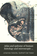 Atlas And Epitome Of Human Histology And Microscopic Anatomy Book PDF