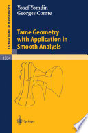 Tame Geometry with Application in Smooth Analysis