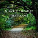 A Walk Through the Forest Book
