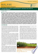 The challenge of Africa  s nitrogen drought