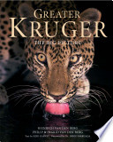 Greater Kruger   The Big Picture
