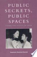 Public Secrets  Public Spaces Book