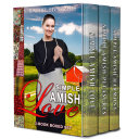 Simple Amish Love 3 Book Boxed Set