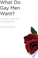 What Do Gay Men Want?