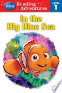 Finding Nemo  In the Big Blue Sea
