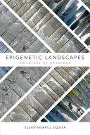 Epigenetic Landscapes