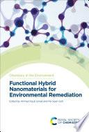 Functional Hybrid Nanomaterials for Environmental Remediation